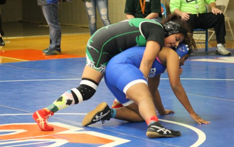 Lady Colt wrestlers place at state