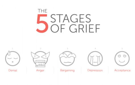 Clinton supporter works through 5 stages of Trump grief
