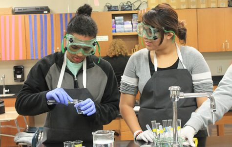 IB juniors get hands-on to identify carbohydrates
