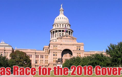 12 candidates vie for spot on ballot for Texas Governor