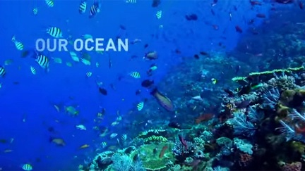 New club plans many projects to raise awareness of, preserve oceans