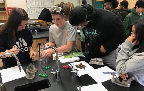 Students in Stephanie Reynolds AP Environmental Science class participate in a dirt lab.